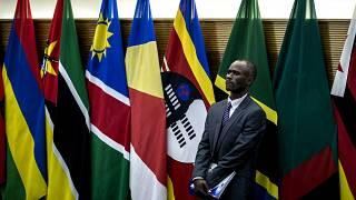 Southern African nations to send troops to Mozambique