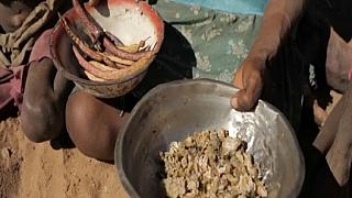 UN pleads for cash as one million people go hungry in Madagascar