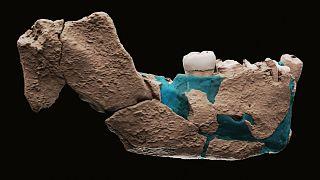 بقایای کشفشده از انسانهای نخستین