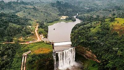 Congo : des excursions écoresponsables au cœur de la faune