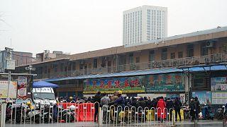 Çin'in Vuhan kentindeki bir deniz ürünleri pazarı