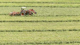 Kompromisszum született a Közös Agrárpolitikáról