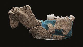 Ismeretlen emberfaj csontjaira bukkantak