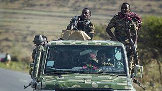 Etiyopya ordu güçleri (Arşiv)