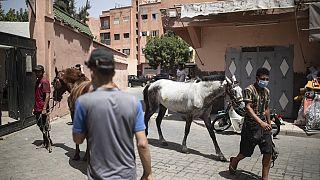 Maroc : le secteur touristique reprend des couleurs