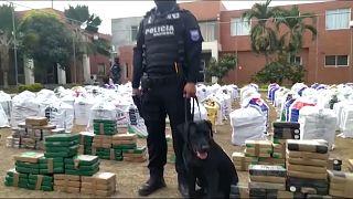 Das in Guayaquil sichergetsellte Kokain wird schwer bewacht