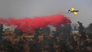 Vier Tote bei Waldbrand auf Zypern, elf Löschflugzeuge im Einsatz