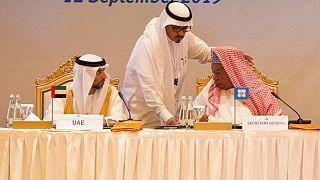 محمد بارکیندو، دبیر کل اوپک(راست) و سهیل مزروعی، وزیر انرژی امارات عربی متحده(چپ)