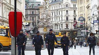 Polizei in Wien in Österreich - ARCHIV