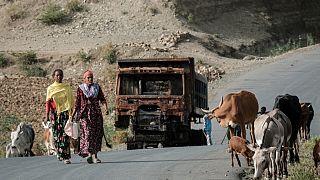Photo prise sur la route près de Dansa, au sud-ouest de Mekele (Tigré, Ethiopie), le 20/06/2021
