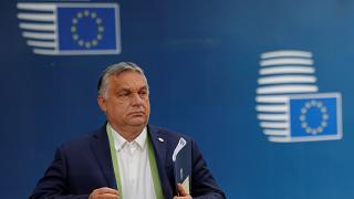The anti-LGBT law was proposed by Hungary's prime minister Viktor Orban