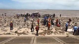 Çin'de karaya vuran balinaları kurtarmak için zamana karşı yarış | Video