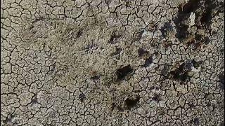 أرض تعاني من التصحر في العراق