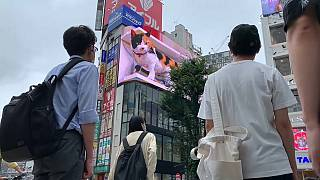 Un chat en 3D salue les passants au Japon