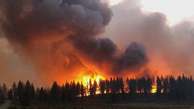 Wildfires rage in Russia, Spain and the US amid high temperatures