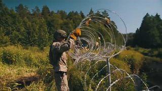 ليتوانيا تقيم سياجا على طول حدودها مع بيلاروس للحد من تدفق المهاجرين نحو أراضيها