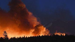Hőhullám és erdőtűz tombol az USA nyugati partján