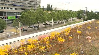 Giardini di città, a Basilea.