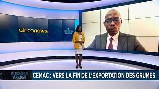 CEMAC seeks to add value to wood exports  [Business Africa]