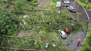 Fallen trees and broken branches have buried and heavily damaged cars near Zurich.