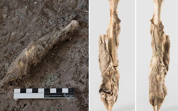 موزه باستانشناسی زنجان و موزه معدن بوخوم آلمان