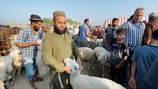 Habitantes da Faixa de Gaza reúnem-se par compra e venda de borregos