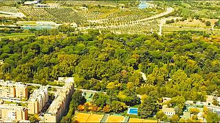 Grüne Wand um Madrid kühlt und schluckt CO2