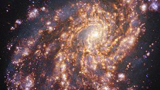هذا بالضبط ما تبدو عليه صور النجوم الصغيرة التي نشرها علماء الفلك الأوروبيون