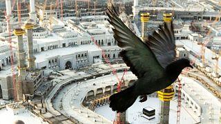 مراسم حج در عربستان