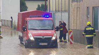 Die Feuerwehr im Rettungseinsatz