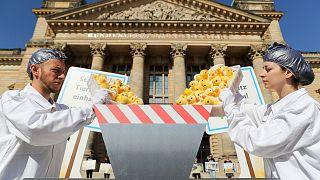 تظاهرات علیه کشتار جوجههای نر در مرغداریها