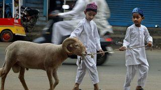 Cachemira celebra la Fiesta del Sacrifico sin sacrificio de animales