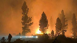 Oregon in fiamme: migliaia di evacuati