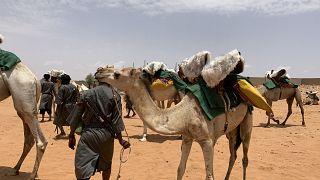 Meet Mauritania's Mehari National Guards