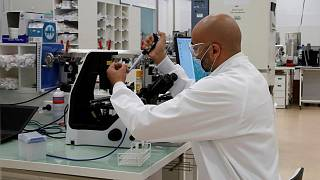 تحقیق در آزمایشگاه شرکت سانوفی