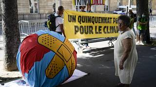 Protest für mehr Klimaschutz vor dem Parlament in Paris