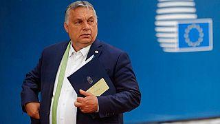 Macaristan, AB tepkisi üzerine 'eşcinsellik yasasını' referanduma götürüyor