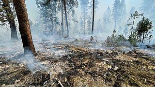 Plus de 2 000 pompiers luttent pour contenir le Bootleg Fire qui fait rage dans le sud de l'Oregon. Photo prise le 17 juillet 2021 près de Klamath Falls, Oregon.