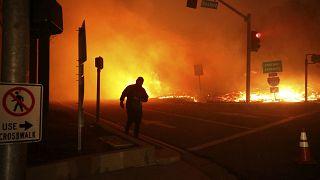 آتش سوزی گسترده جنگلها در غرب آمریکا