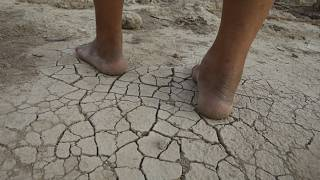 Iran has previously experienced water shortages due to high salinity levels.