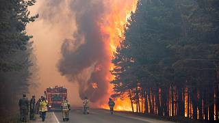 In this June 16, 2021 photo, firefighters work at the scene of forest fire near Andreyevsky village outside Tyumen, western Siberia, Russia.