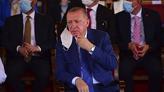 Au cours d'une visite à Chypre-nord le 20 juillet 2021, le président Erdogan a réitéré son soutien à une solution à « deux Etats distincts ».