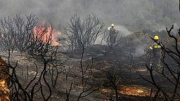 Ελλάδα - Φωτιές σε Κορινθία και Χαλκιδική