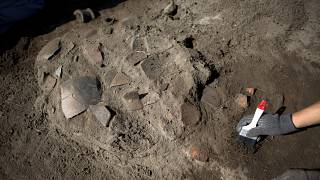 Arkeoloji, Meksika