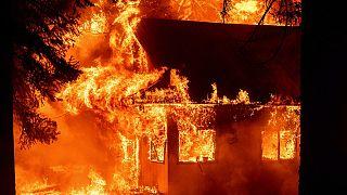 Emergenza incendi in California. Bruciano case e boschi