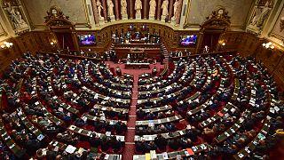 Fransız Senatosu arşiv fotoğrafı