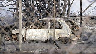Sardegna devastata dagli incendi. Oltre 20.000 gli ettari in fumo. I principali roghi nell'oristanese. Fiamme anche nelle provincie di Nuoro e Sassari
