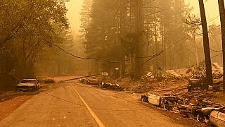 L'incendie Dixie ravage des hectares de forêt en Californie