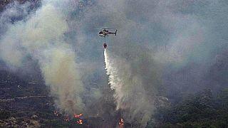 İtalya'nın Sardinya Adası'nda çıkan orman yangınına müdahale eden bir helikopter.