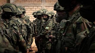 Mozambique welcomes foreign soldiers to fight insurgency